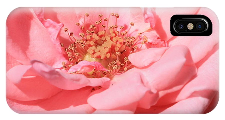 Roses IPhone X Case featuring the photograph Sweet Pink Rose by Carol Groenen
