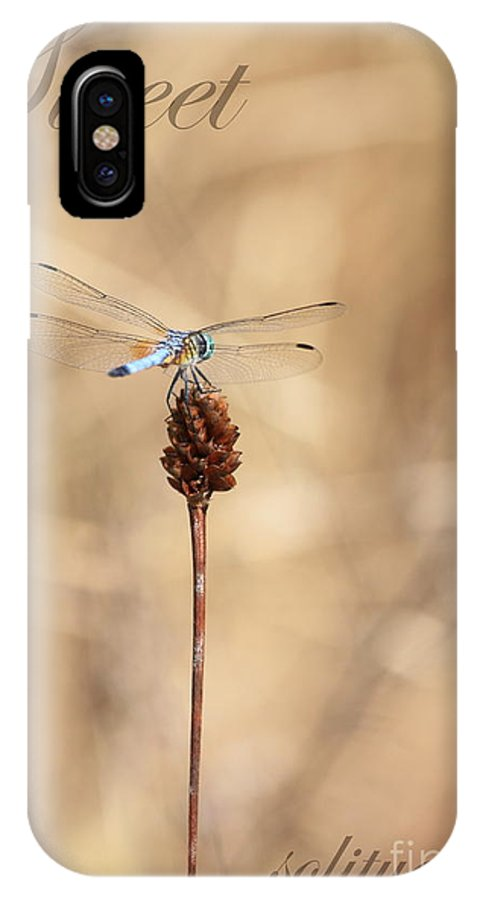 Solitude IPhone X Case featuring the photograph Sweet Solitude by Carol Groenen