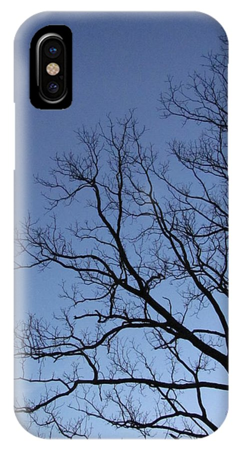 Winter Blue Sky Tree Silhouette Photograph Skyscape Canvas Prints Contrast Sycamore Silhouette Arbor Sky Clear Sky Clear Day IPhone X Case featuring the photograph Sycamore Silhouette by Joshua Bales