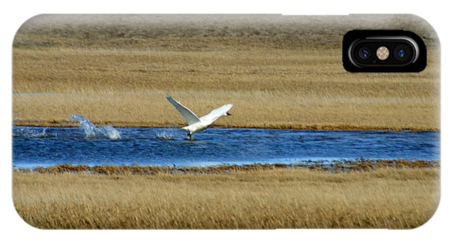 Swan IPhone X Case featuring the photograph Take Off by Anthony Jones