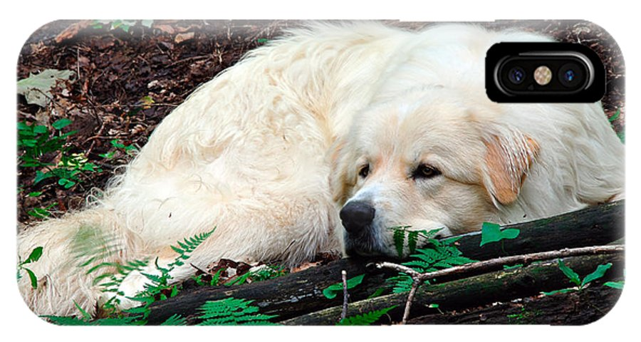 Great Pyrenees IPhone X Case featuring the photograph Taking A Break by Thomas R Fletcher