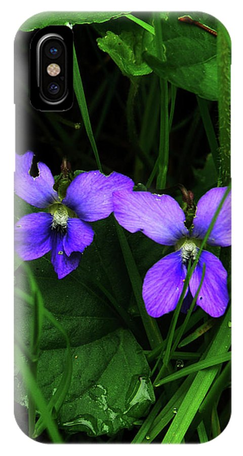 Wild Violets IPhone X Case featuring the photograph Tattered Wild Violets by Natalie LaRocque