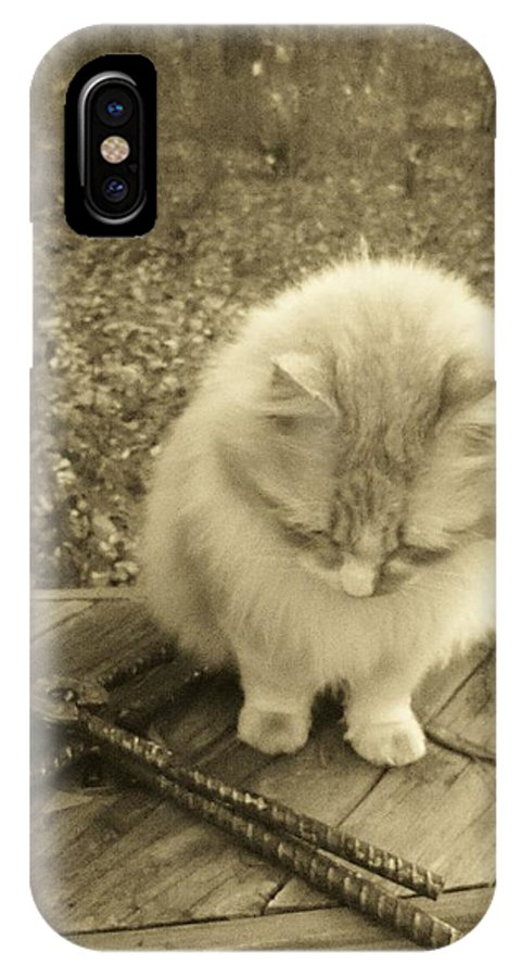 Cat IPhone X Case featuring the photograph Ted In Sepia Tone by Deborah Montana