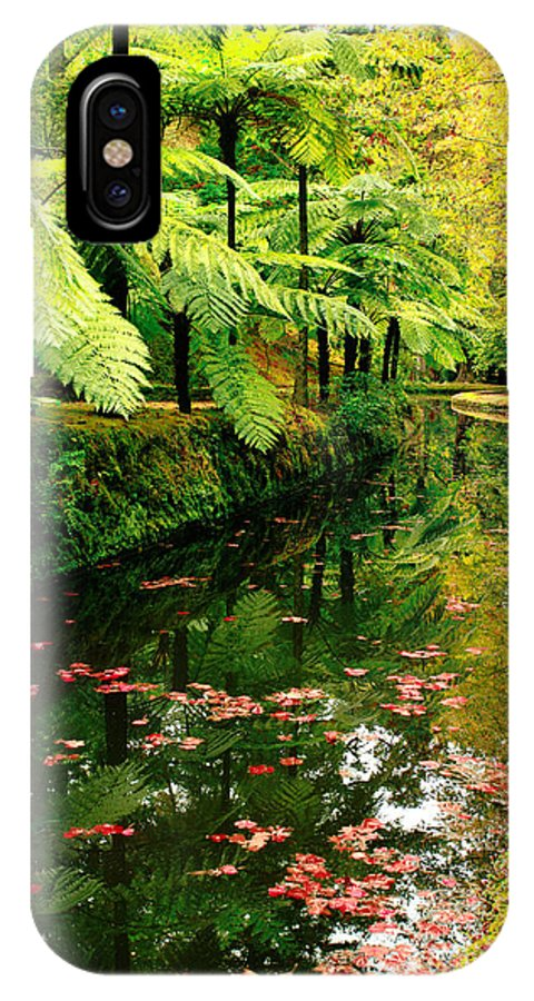 Azores IPhone Case featuring the photograph Terra Nostra Park by Gaspar Avila