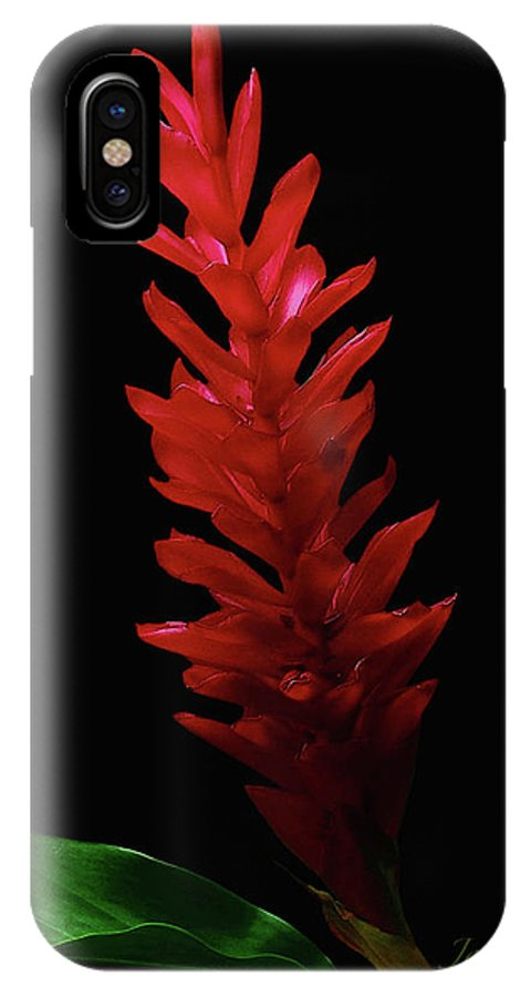 Red Ginger IPhone X Case featuring the photograph Teuila by James Temple