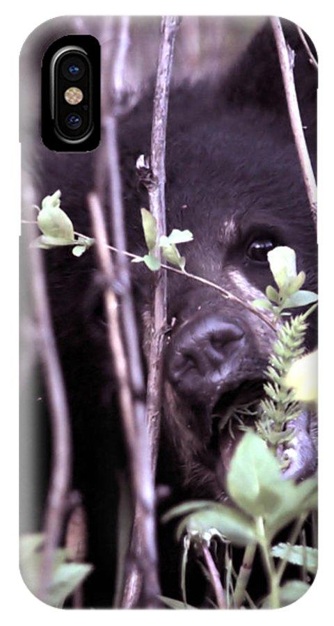 Bearcub Black Bear Dandelion Nature Wildlife Grass Cute  IPhone X Case featuring the photograph The Bearcub And The Dandelion by Bastiaan De Peuter