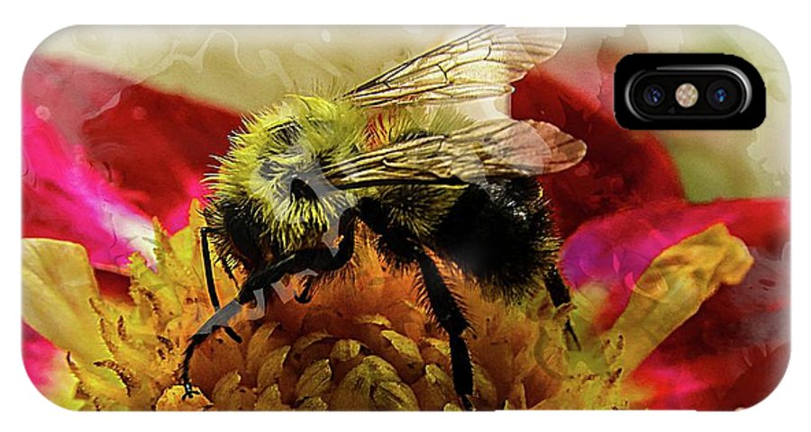Bumble Bee IPhone X Case featuring the photograph The Bees Knees by Lisa Hurylovich