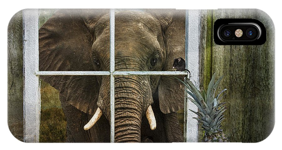 Elephant In Window IPhone X Case featuring the photograph The Big Guest by Nichon Thorstrom