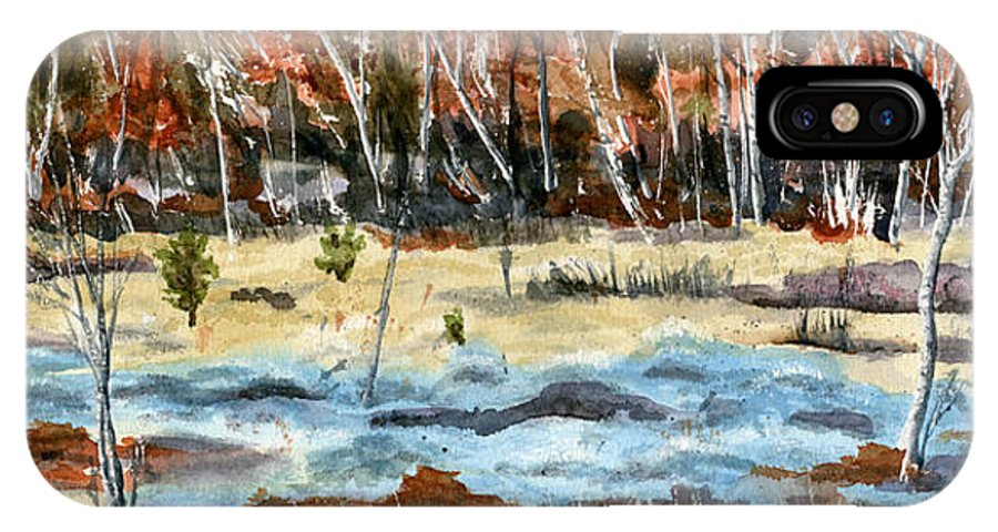 Landscape IPhone X Case featuring the painting The Blue Bog by Mary Tuomi