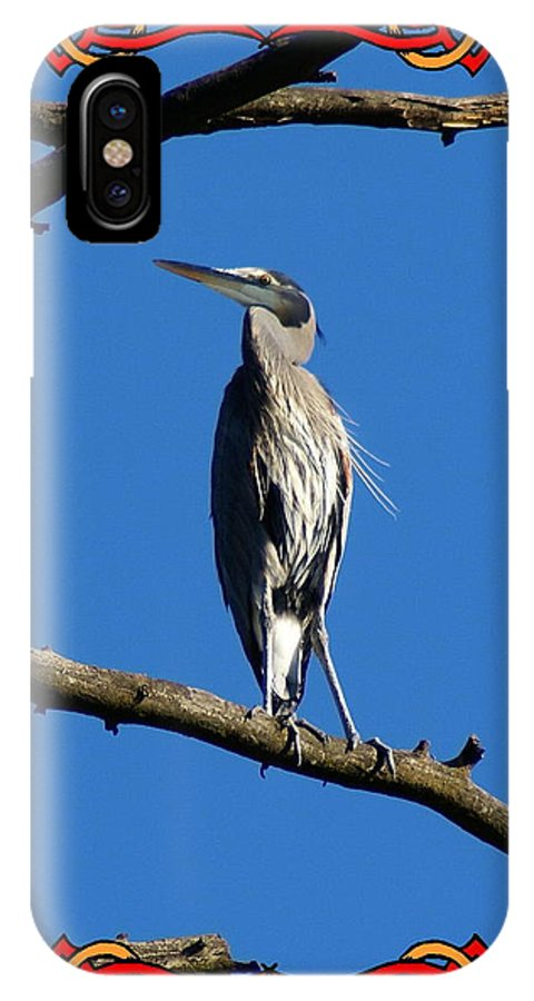 Birds IPhone X Case featuring the photograph The Blue Heron Claimed He Was Framed by Ben Upham III