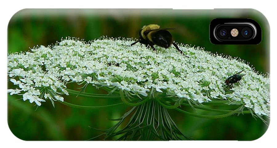 Bumblebee IPhone Case featuring the photograph The Bumblebee And The Fly by RiaL Treasures