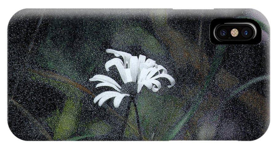 Daisy IPhone X Case featuring the photograph The Daisy by Wayne King
