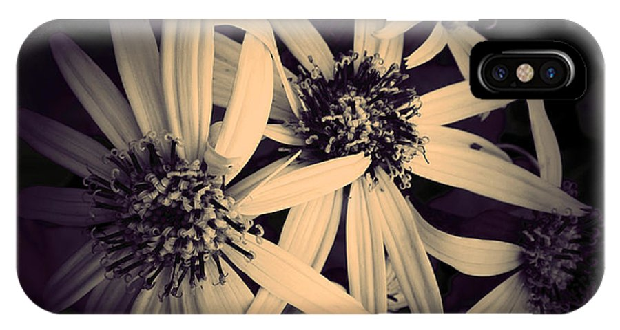 Flowers IPhone X Case featuring the photograph The Embrace by Tara Turner