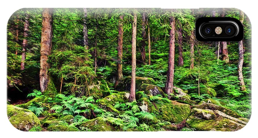 Landscape IPhone X Case featuring the photograph The Enchanted Forest by Marcia Colelli