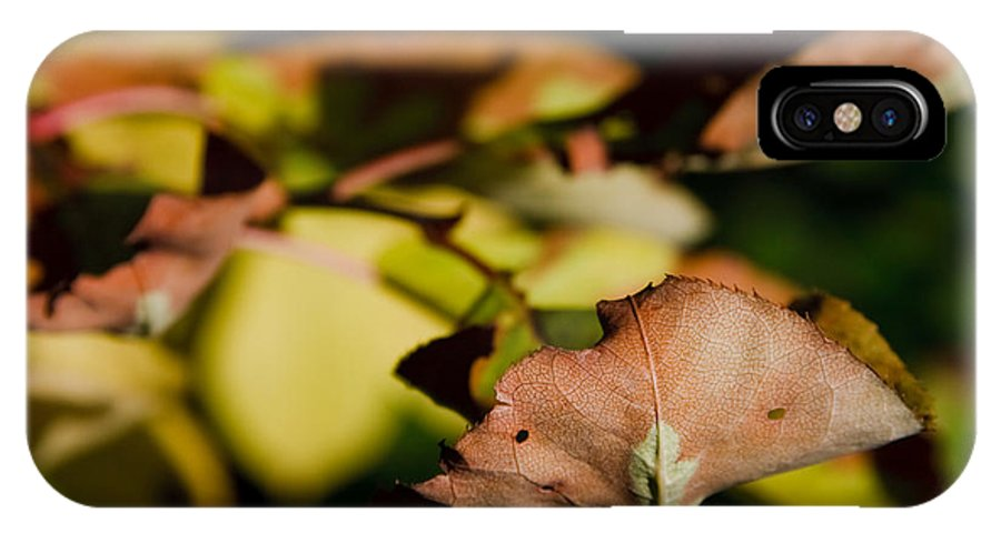 Fall IPhone X Case featuring the photograph The End Of Fall by Bob Mintie