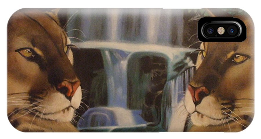 Waterfall IPhone X Case featuring the painting The Fall Of A Reflection by Jamie Preston