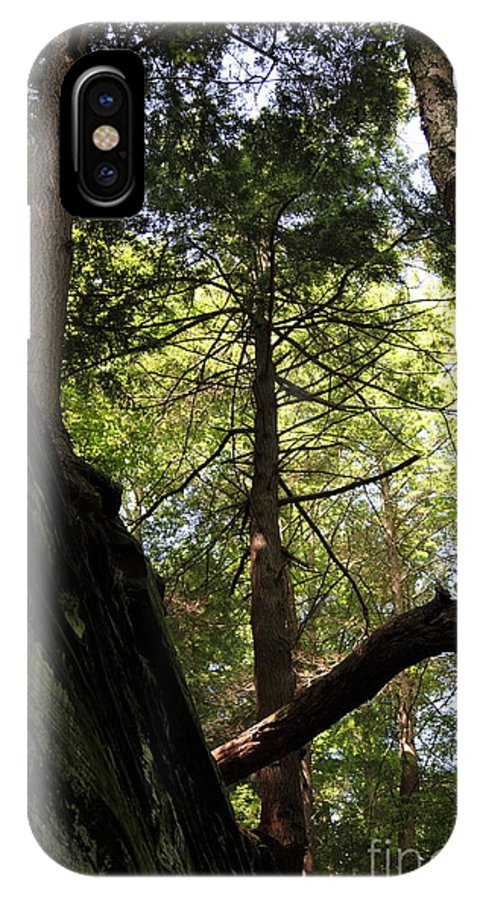 Tree IPhone X Case featuring the photograph The Fallen Triangle by Amanda Barcon