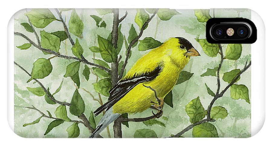 Birds IPhone X Case featuring the painting The Goldfinch by Mary Tuomi
