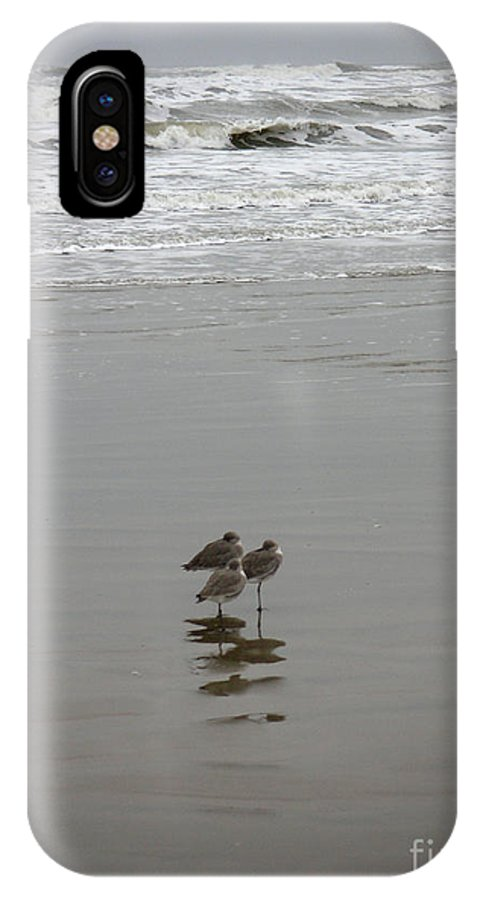 Nature IPhone X Case featuring the photograph The Gulf In Shades Of Gray - Three Sleepy Heads by Lucyna A M Green