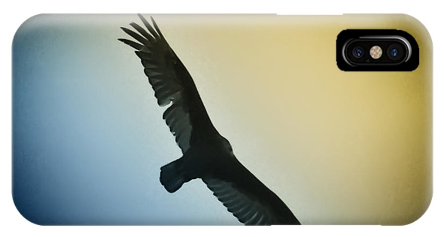 Birds IPhone X Case featuring the photograph The Hawk by Bill Cannon