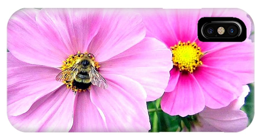 Bee IPhone X Case featuring the photograph The Honeymaker by Will Borden