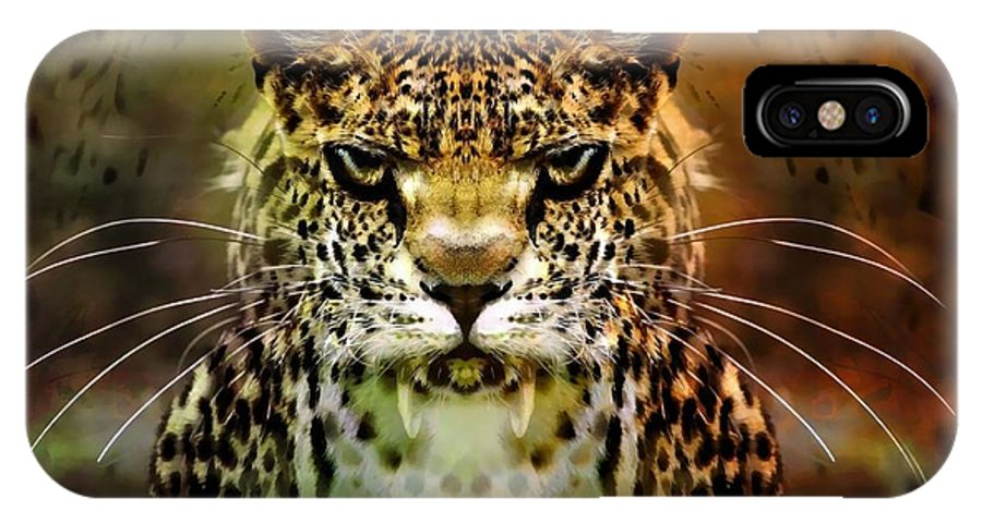 Leopard IPhone X Case featuring the photograph The Leopard Of The Temple by Daniel Arrhakis