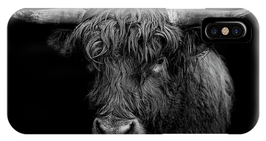 Highland IPhone X Case featuring the photograph The Monarch by Paul Neville