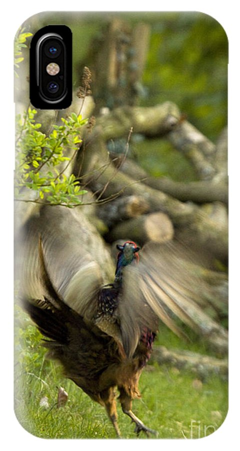 Pheasant IPhone X Case featuring the photograph The Movement by Angel Ciesniarska