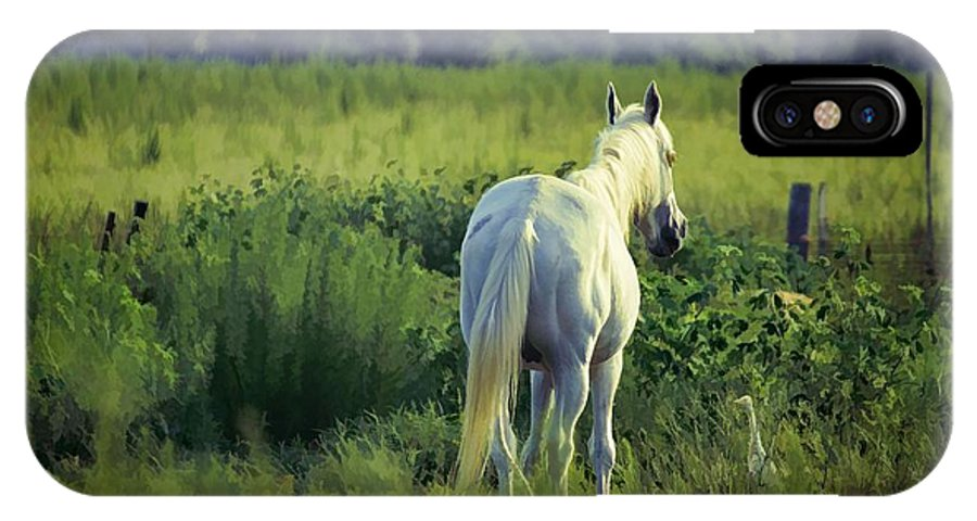 Animals IPhone X Case featuring the photograph The Old Grey Mare by Jan Amiss Photography