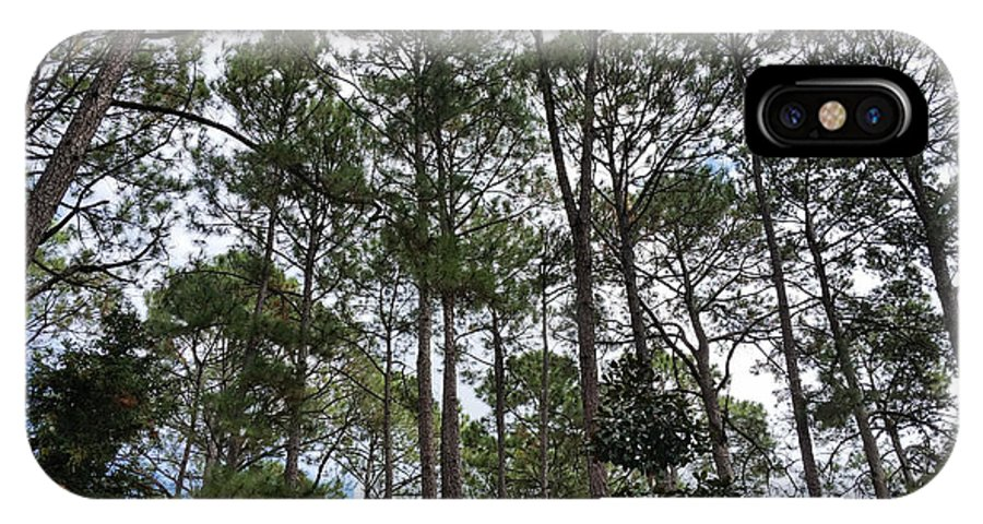 Green IPhone X Case featuring the photograph The Pines Of Tallahassee by Laura Martin