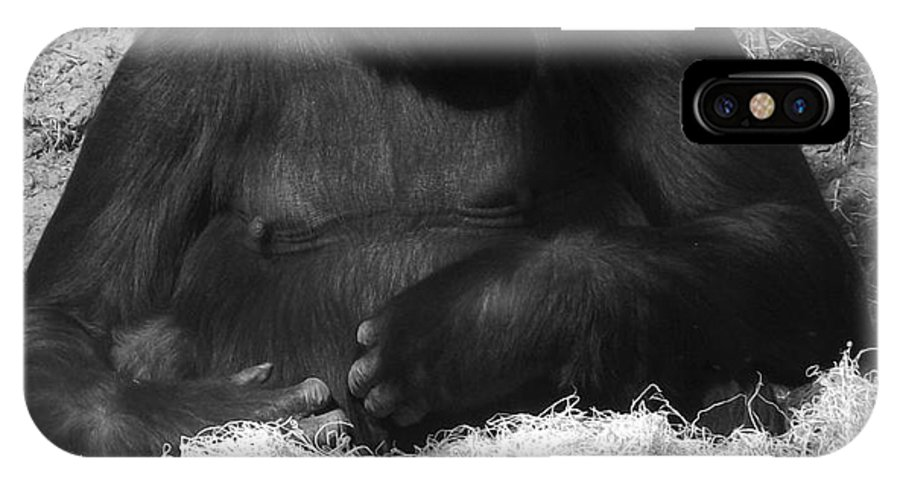 Gorilla IPhone X / XS Case featuring the photograph The Pose by Sara Raber