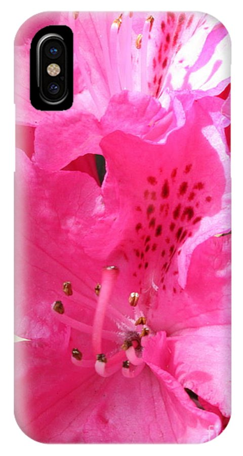 Rhododendron IPhone X Case featuring the photograph The Power Of Pink by Carol Groenen