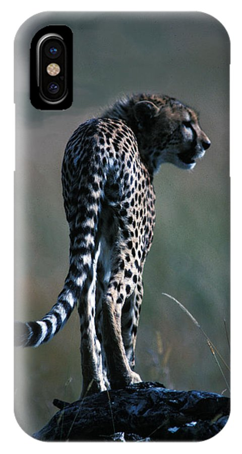 Fast IPhone X Case featuring the photograph The Predator by Carl Purcell