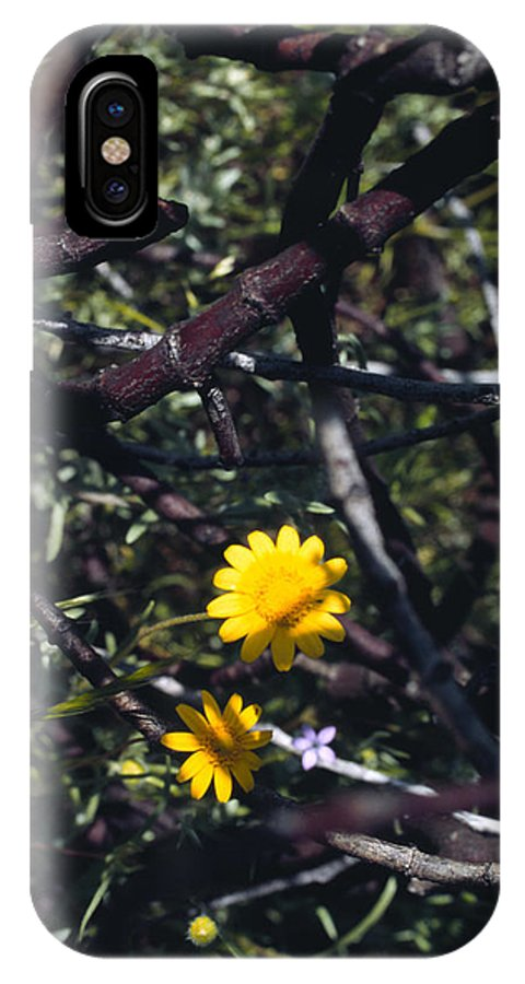 Flower IPhone Case featuring the photograph The Prisoner by Randy Oberg