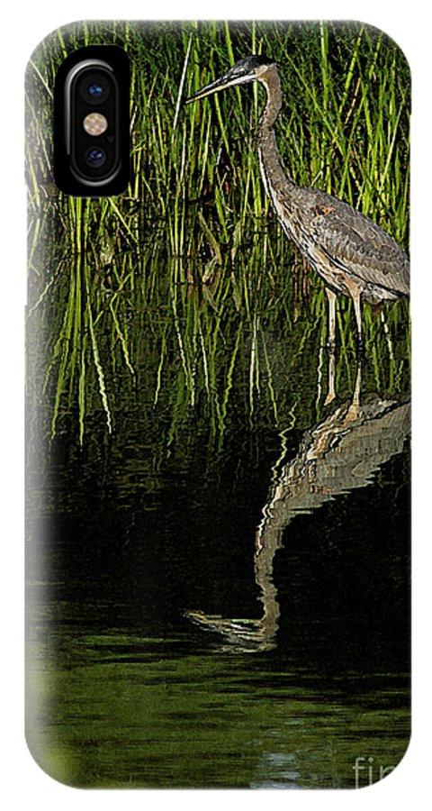 Birds IPhone X Case featuring the digital art The Quest by Mark Kryzaniak