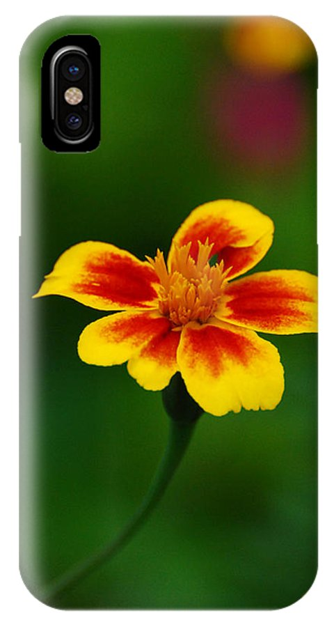 Flower IPhone X Case featuring the photograph The Same To You by Adrian Bud