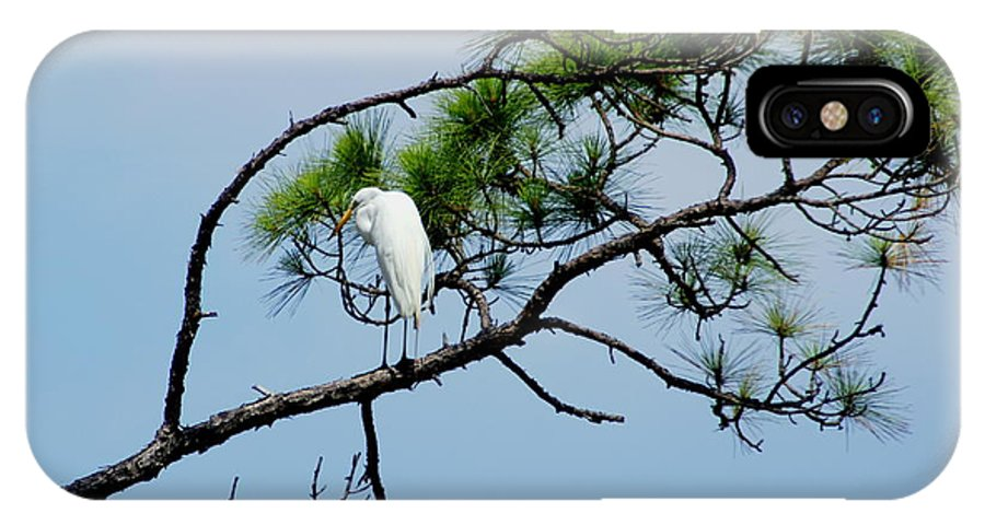 Bird IPhone X Case featuring the photograph The Stoic Egret - Debbie May by Debbie May