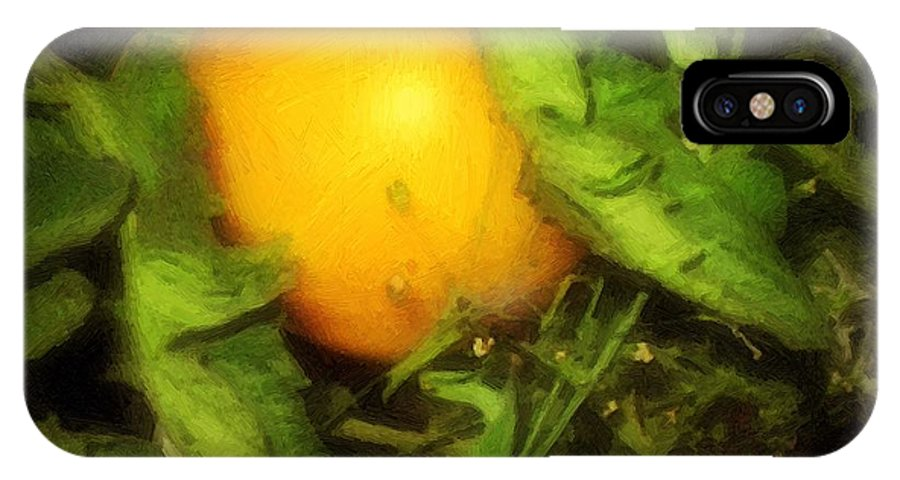 Garden IPhone X Case featuring the painting The Sun Is Sleeping in the Garden by RC DeWinter