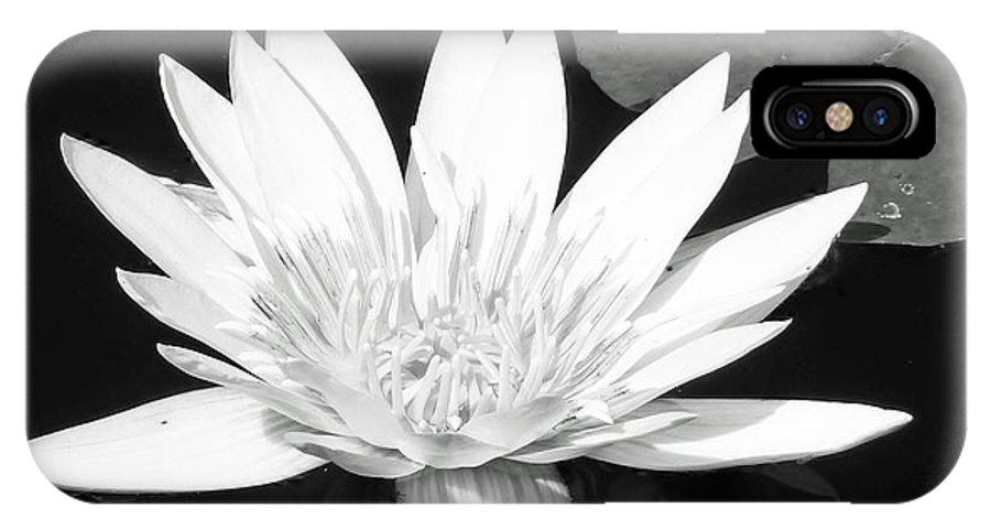 Water Lily IPhone X Case featuring the photograph The Vintage Lily II by Melanie Moraga