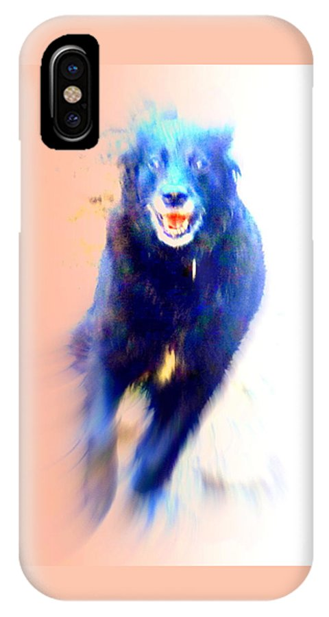 Dog IPhone X Case featuring the photograph There Are Wild Dogs Living In The Mountains by Hilde Widerberg