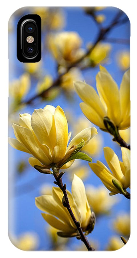 Magnolia IPhone X Case featuring the photograph They Also Come In Yellow by Claudius Cazan