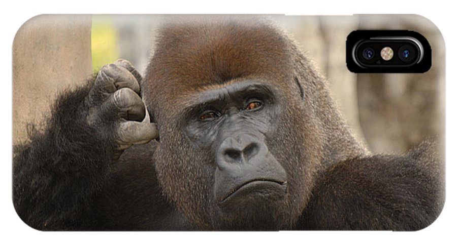 Gorilla IPhone X Case featuring the photograph Think About It by Keith Lovejoy