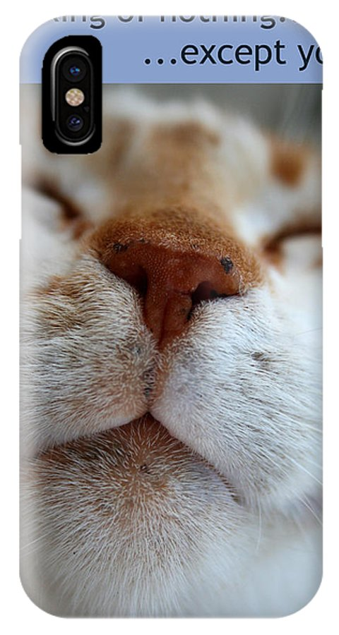 Cat IPhone X Case featuring the photograph Thinking Of Nothing by Gaile Griffin Peers