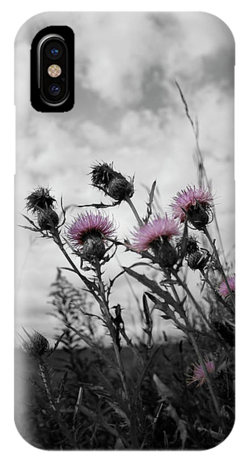 Thistle IPhone X Case featuring the photograph Thistle by Dylan Punke