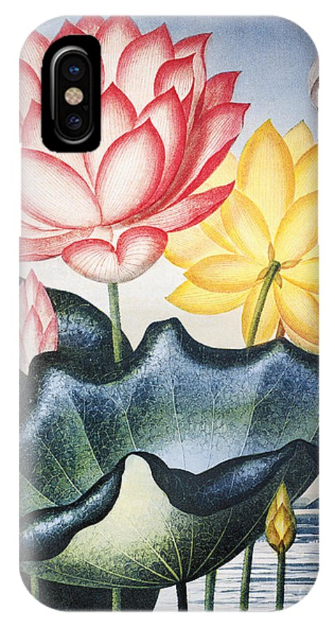 1804 IPhone X Case featuring the photograph Thornton: Lotus Flower by Granger