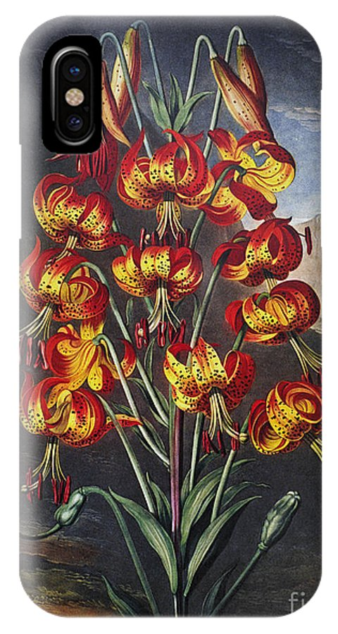 1799 IPhone X Case featuring the photograph Thornton: Superb Lily by Granger