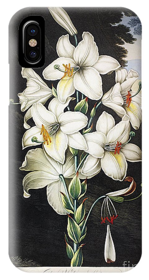 1800 IPhone X Case featuring the photograph Thornton: White Lily by Granger