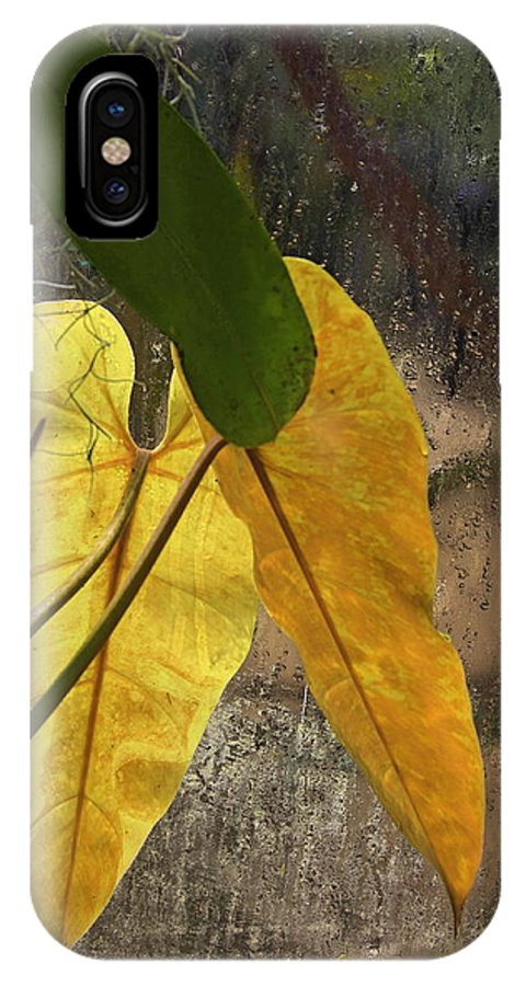 Plant IPhone X Case featuring the photograph Three Exotic Leaves by Viktor Savchenko