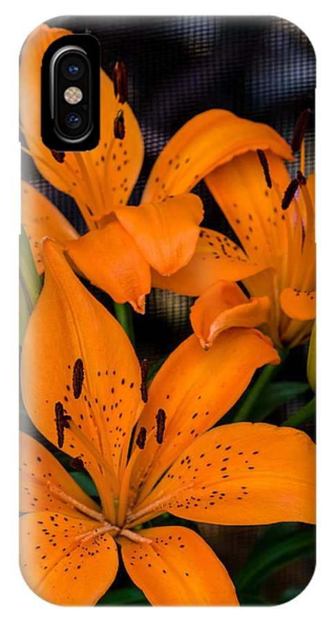 Liliaceae IPhone X Case featuring the photograph Three Lilies by Ed Gleichman