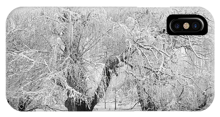 Black And White IPhone X Case featuring the photograph Three Trees In The Snow - Bw Fine Art Photography Print by James BO Insogna